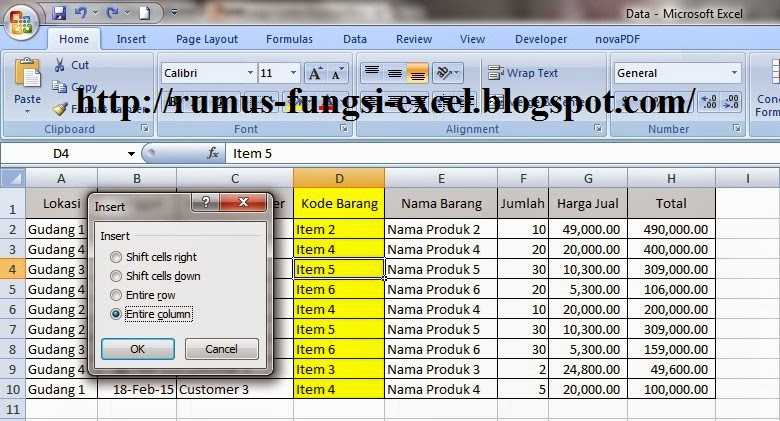 fungsi Insert entire column di excel