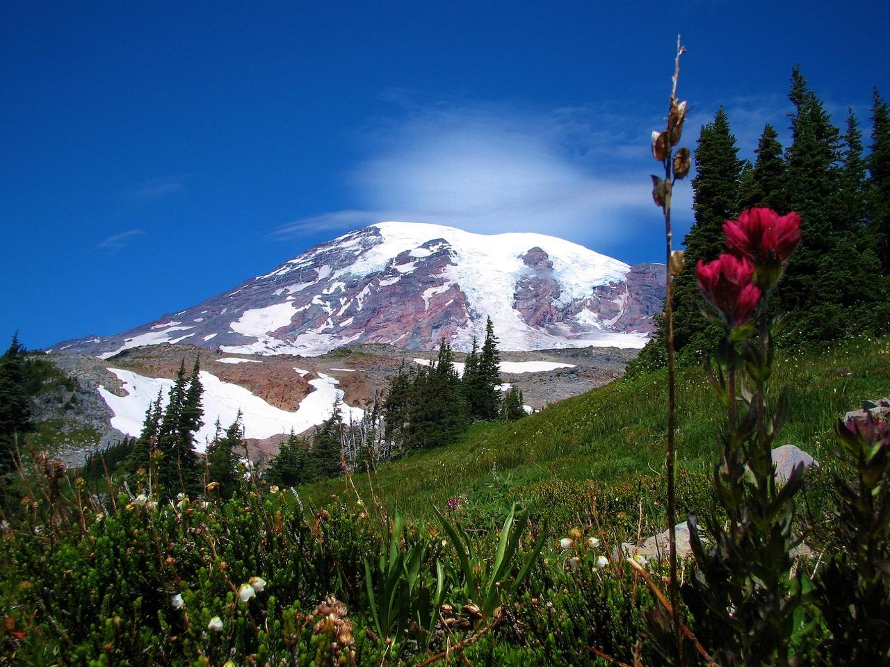 Skyline Trail Mount Rainier