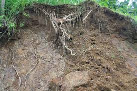 Persebaran Jenis Tanah di Indonesia