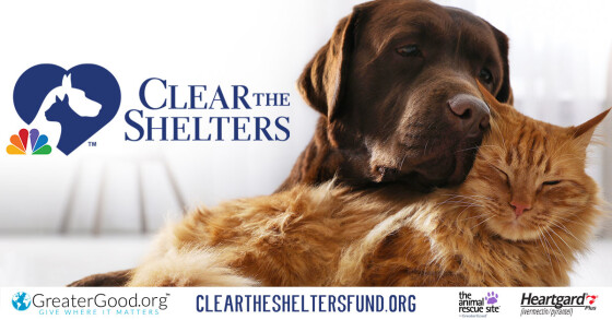 """Clear the Shelters"" pet adoption campaign"